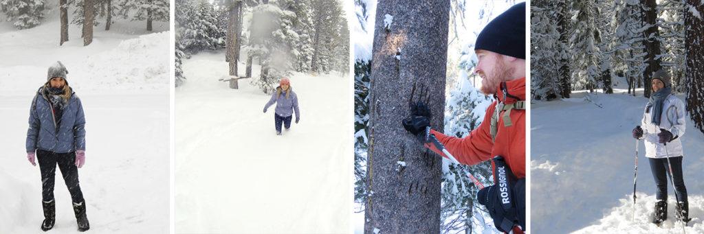 Lake Tahoe, Winter