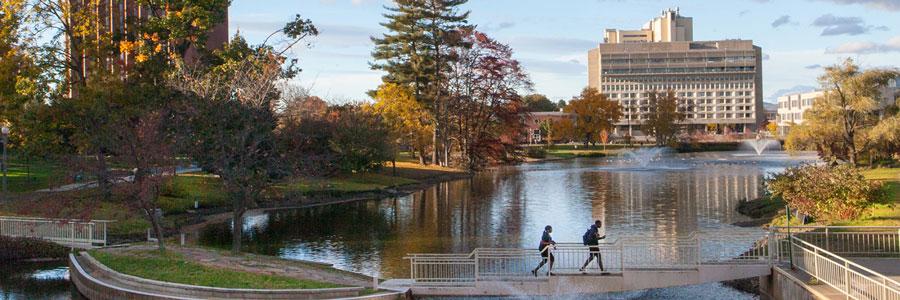 The University of Massachussetts, Amherst